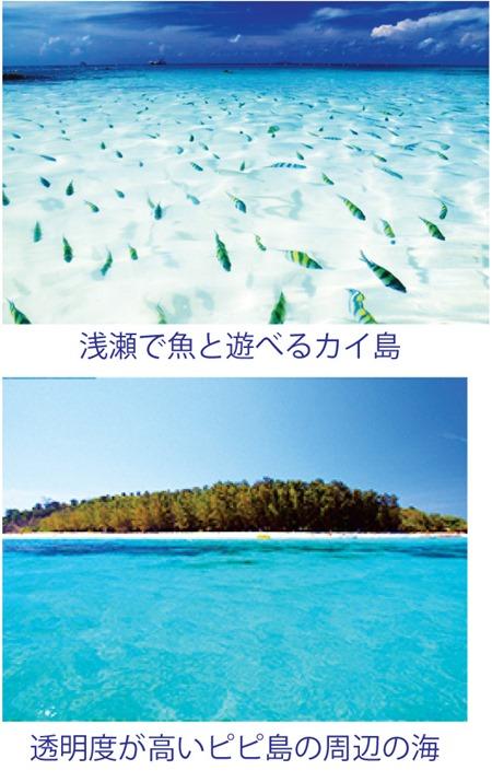 映画の舞台になったピピ島へ日本人常駐の旅行代理店「プーケット旅行センター」から
