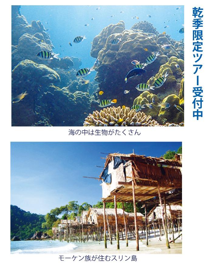 日本人常駐の旅行代理店「プーケット旅行センター」では乾季限定ツアー受付中