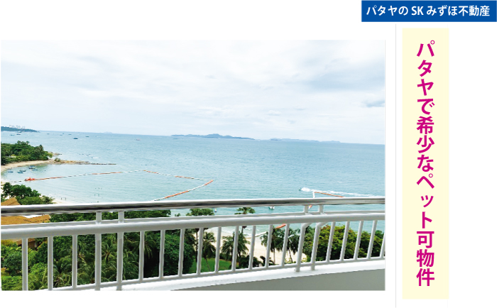 バルコニーから海が一望できます