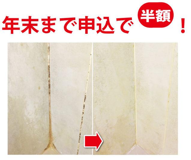 カビを根こそぎ取り除き、完璧に除菌します
