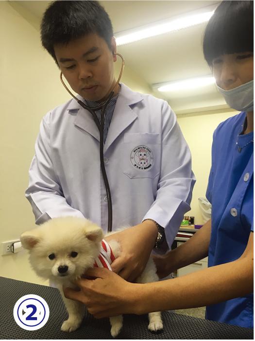 ころ太郎が行く!③ 病気予防も治療もできる 身近な病院はここ‼