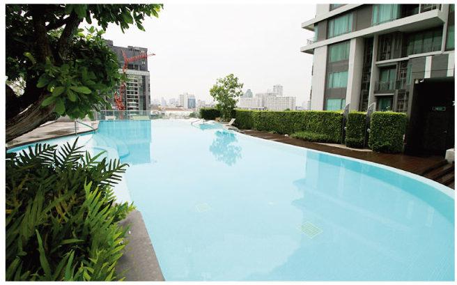 広い屋外プール完備