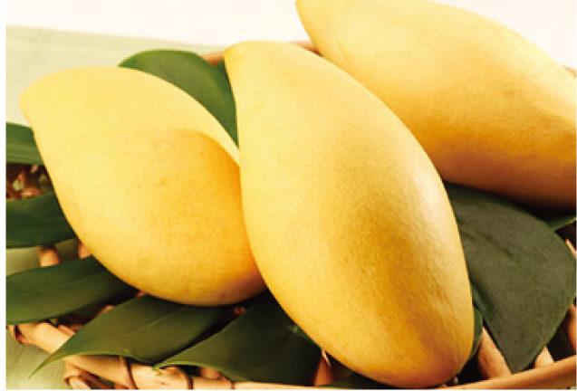 甘くてみずみずしい完熟マンゴー
