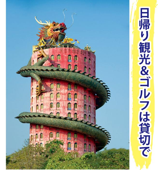 ドラゴンタワー(ワットサムプラン)