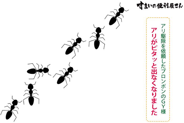 アリがピタッと出なくなりました、アリ駆除を依頼したプロンポンのGY様