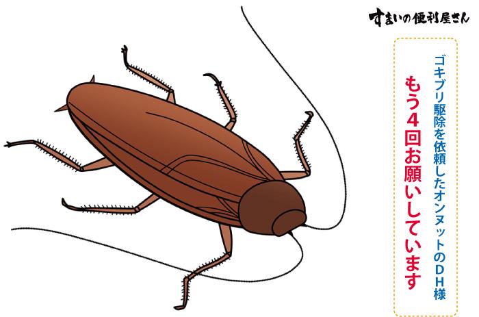 「すまいの便利屋さん」 もう4回お願いしています、ゴキブリ駆除を依頼したオンヌットのDH様