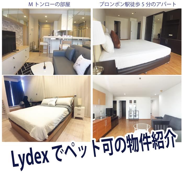 「Lydex(リデックス)」でペット可の物件紹介