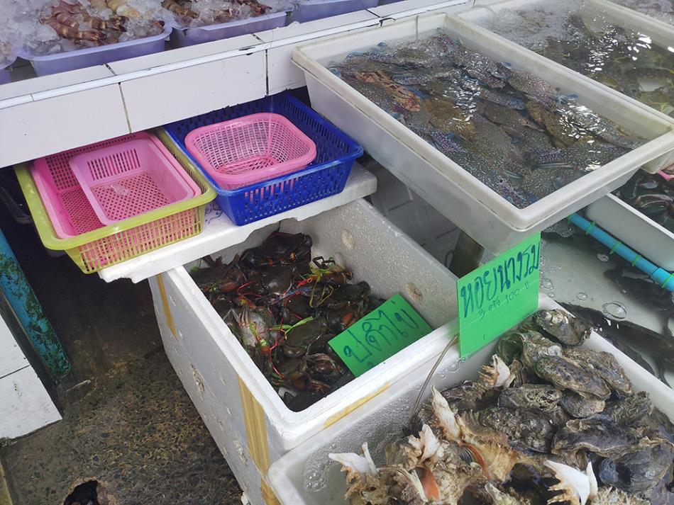 生きたままのカニや牡蠣を売っている店