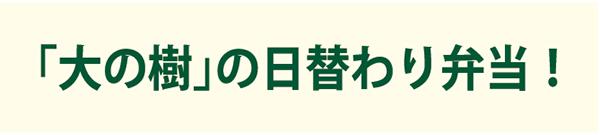 「大の樹」の日替わり弁当!