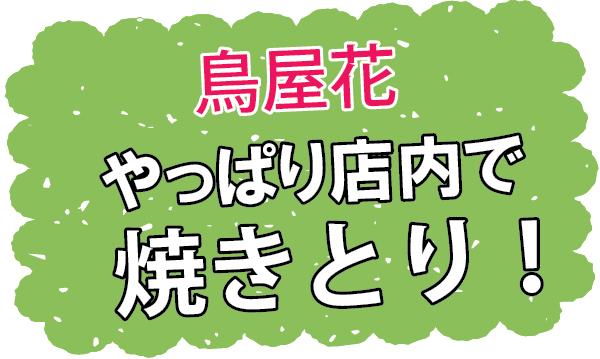 ソイ41の鶏専門店「鳥屋花」はやっぱり店内で焼きとり【伊藤店長、チャリダー日記!第34回】