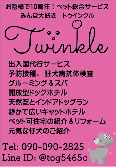Twinkle Pet Parkの広告